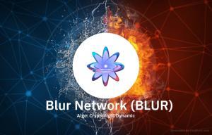 Blur Network