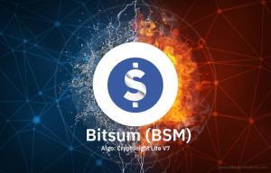Bitsum