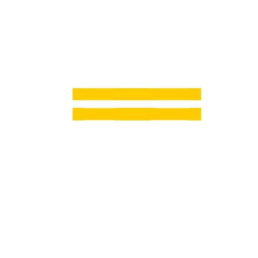 Pennykoin